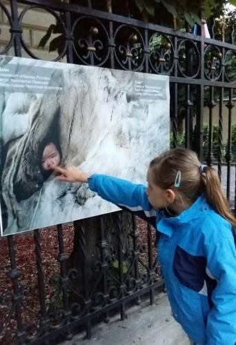 Fetiță arătând cu degetul spreo fotografie în care este un bebeluș