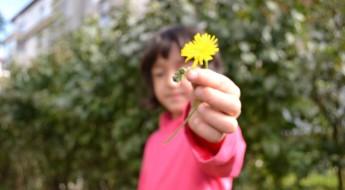 Fetiță oferind o păpădie