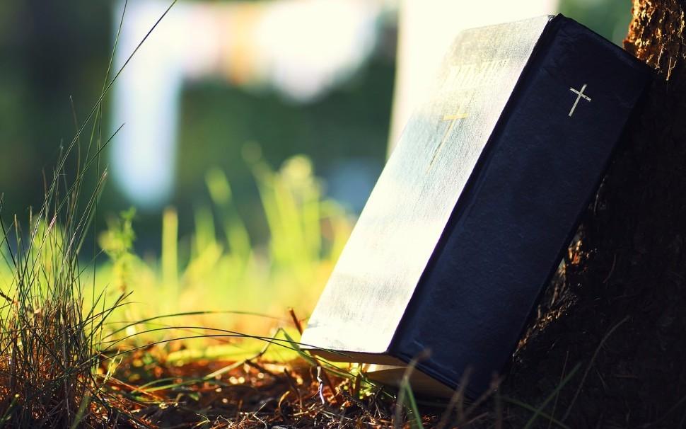 Biblie în natură, pe iarbă