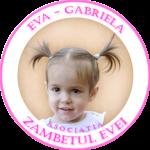 zambetul-evei-logo